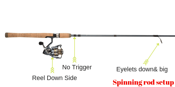 spinning rod setup