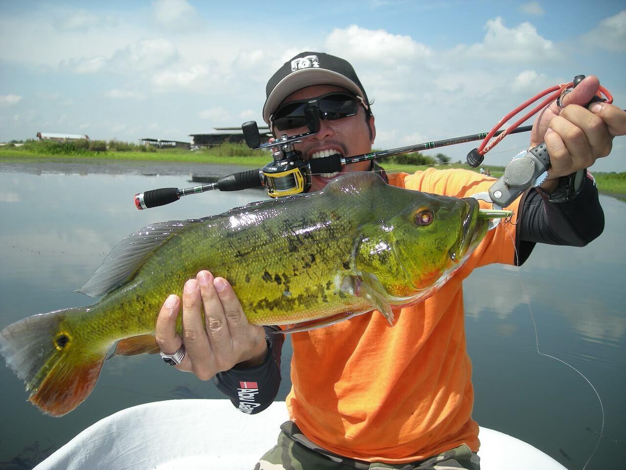 Bass Fishing Line
