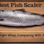 10 Best Fish Scaler In 2020 [Any Type Fish]