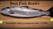 10 Best Fish Scaler [Day & Night When Comparing With A Knife]