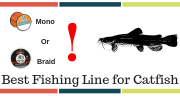 10 Best Fishing Line For Catfish [From All Types Of Line]