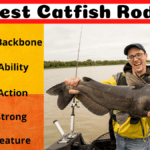 11 Best Catfish Rods In 2020 [Catfish Special]