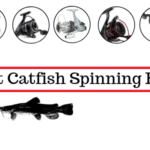 7 Best Catfish Spinning Reel In 2020 [Catfish Special]