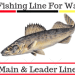 5 Best Fishing Line For Walleye In 2020
