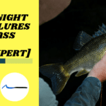 11 Best Night Fishing Lures for Bass In 2020