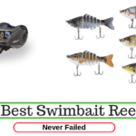 8 Best Swimbait Reel Reviews 2020 [Never Failed]