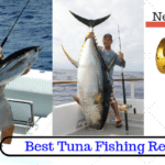 11 Best Tuna Fishing Reels 2020 [Never Failed A Tuna Fish]