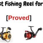 9 Best Fishing Reel for Bass In 2020 [Spinning & Baitcasting]