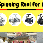 9 Best Spinning Reel For Walleye 2020 [Best Walleye Fish Reel]