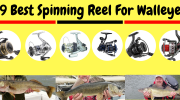 9 Best Spinning Reel For Walleye 2019 [Best Walleye Fish Reel]