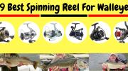 9 Best Spinning Reel For Walleye 2019 [Best Walleye Fish Reel]