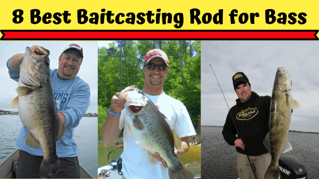 Best Baitcasting Rod for Bass