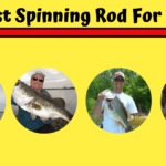 8 Best Spinning Rod for Bass [Special For Bass Fishing]