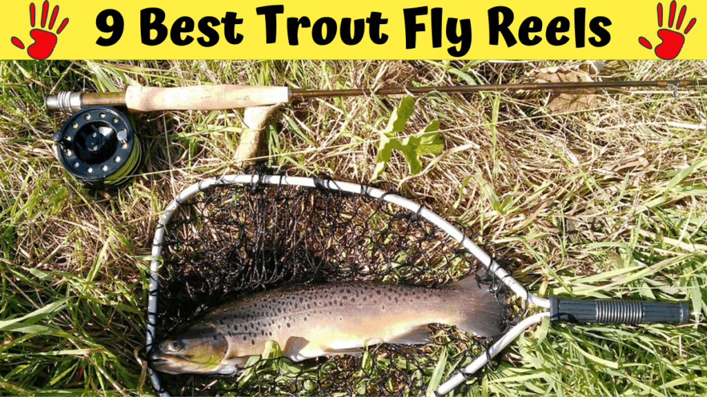 Best Trout Fly Reels