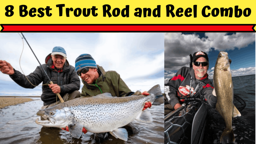 Best Trout Rod and Reel Combo
