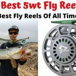 8 Best 5wt Fly Reels In 2020