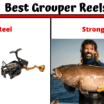 5 Best Grouper Reels In 2020 [Strongest Reel For Strongest Fish]