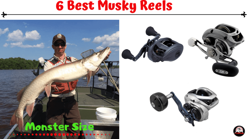 best musky reels