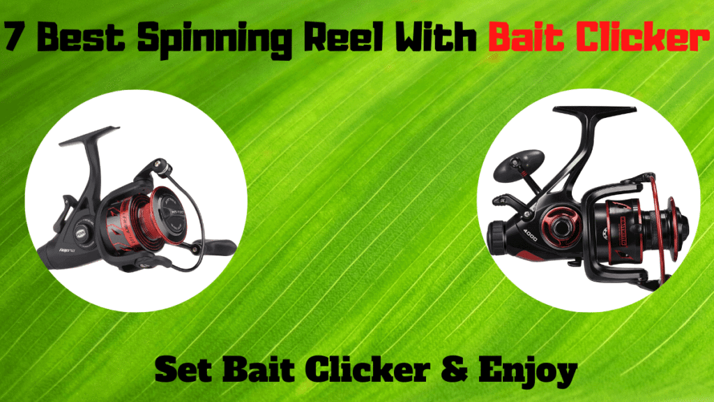 best spinning reel with bait clicker
