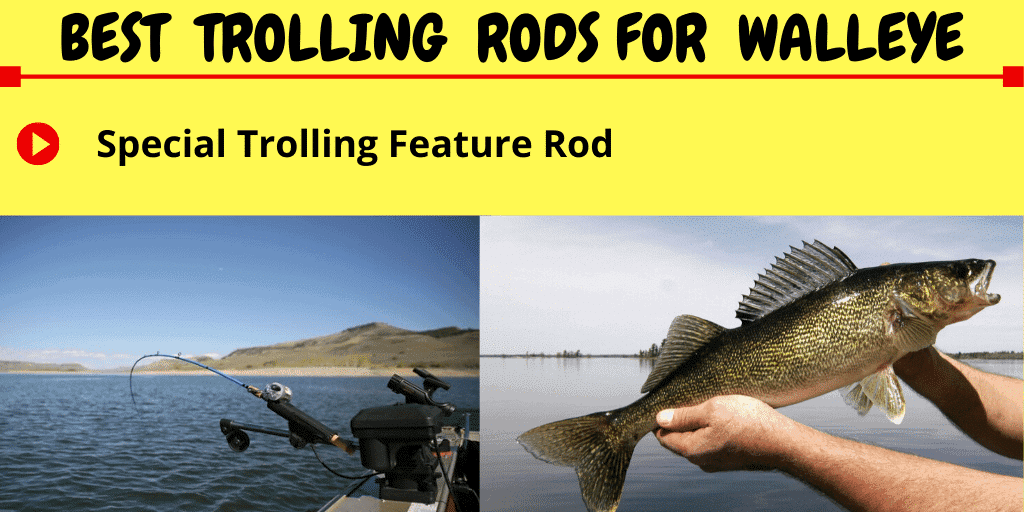 best trolling rods for walleye