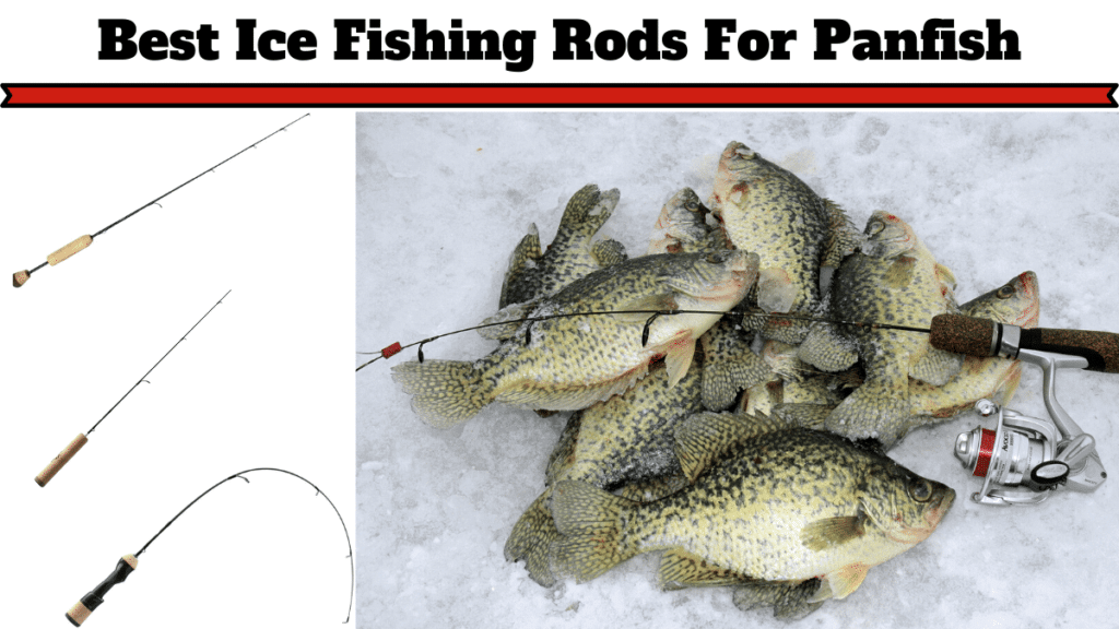 Best Ice Fishing Rod for Panfish