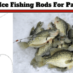 8 Best Ice Fishing Rod For Panfish