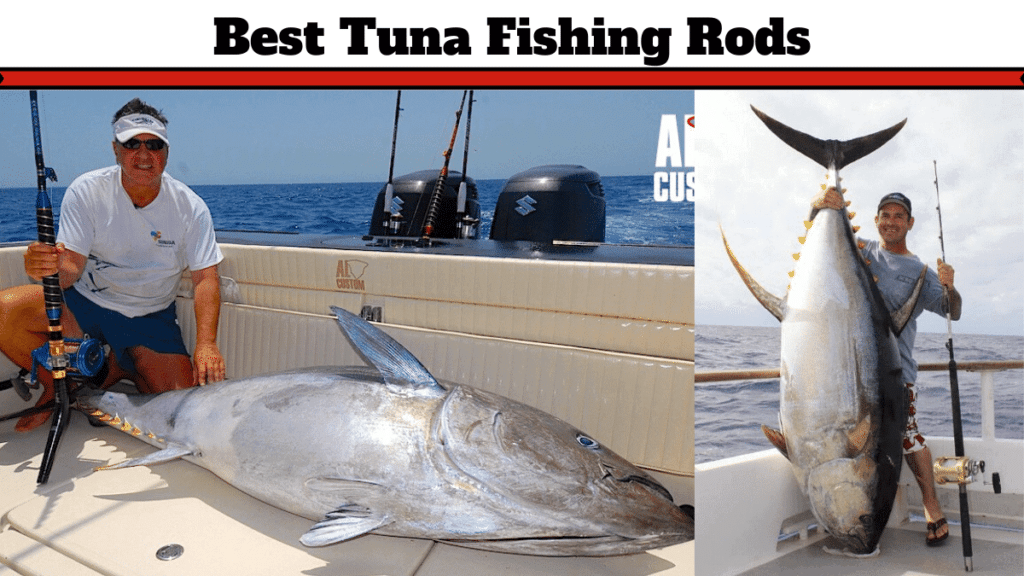 best tuna fishing rods